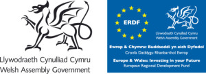 Welsh Assembly Logo_Europe & Wales