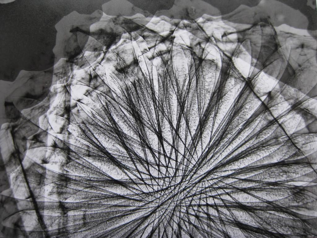 x-ray-film-series-research-Rita-Parniczky